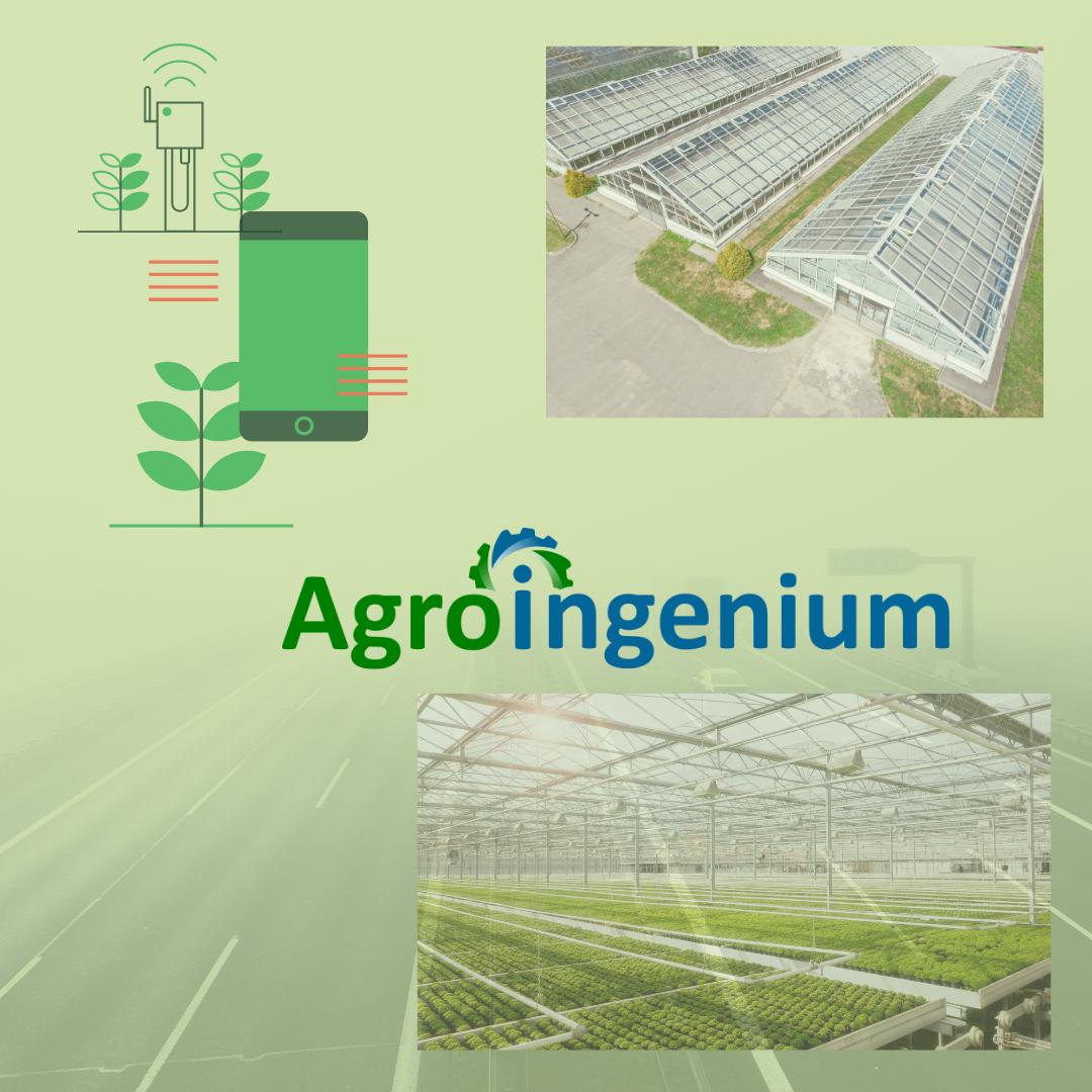 Agroingenium: Servicios de Tecnología en el Agro